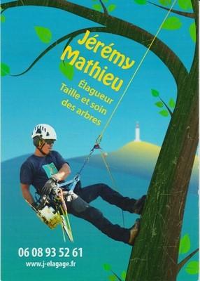 Elagage Jeremy Mathieu